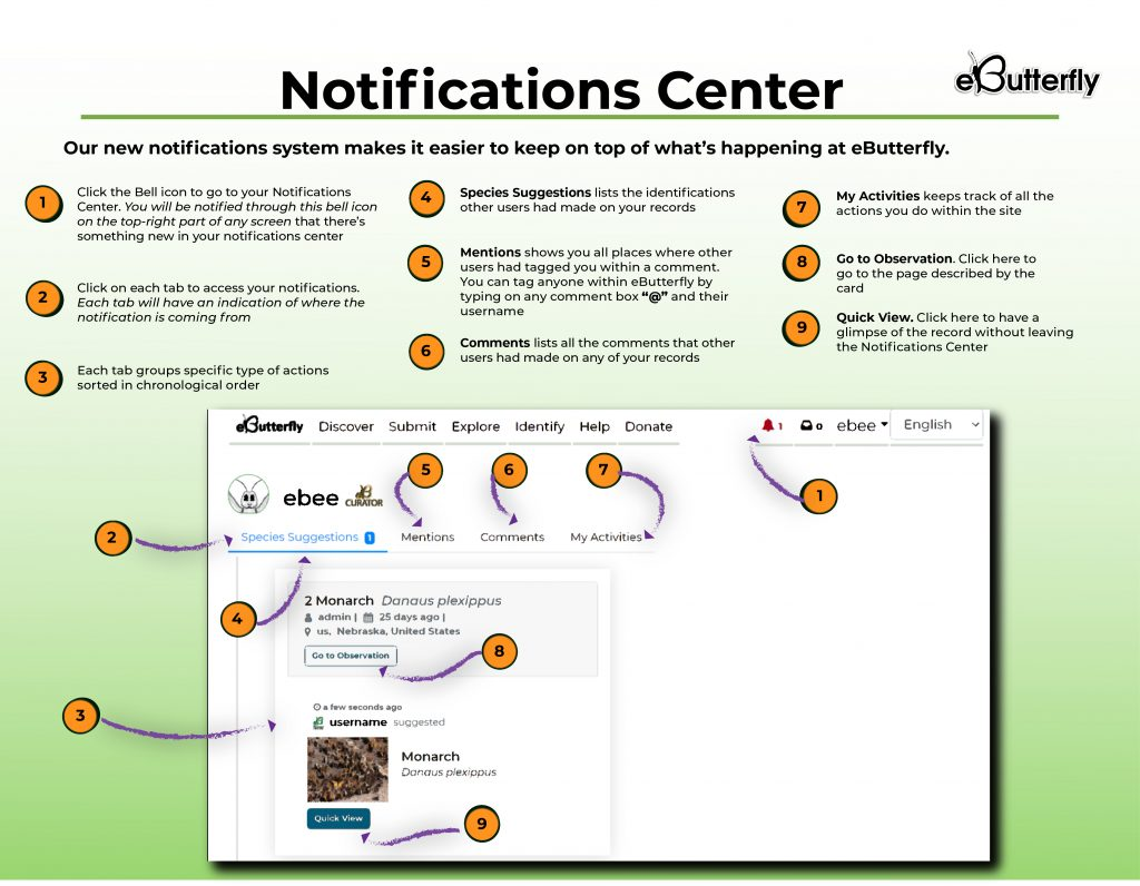 How to use the notifications center